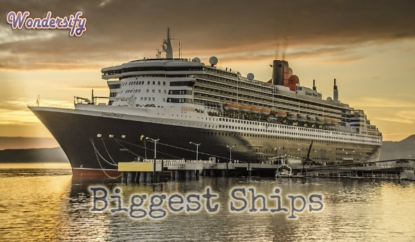 Biggest Ships in the World