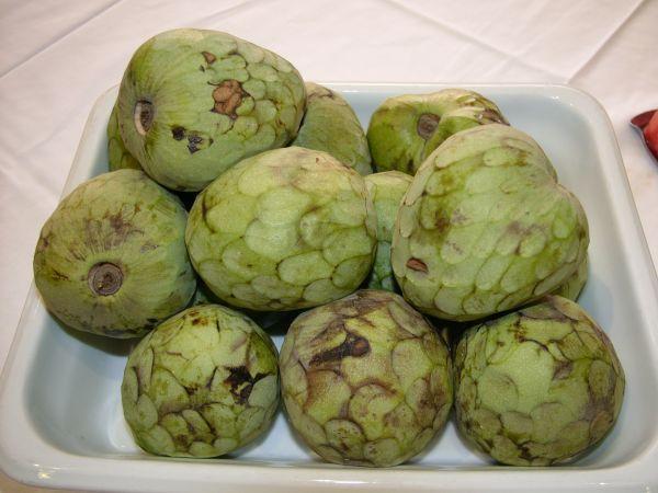 Cherimoya - Rare Fruits