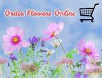 10 Best Places to Order Flowers Online