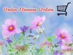 10 Best Places to Order Flowers Online 1
