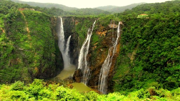 Jog Falls Dangerous Forests